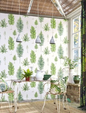 Tapeta Sanderson 216634 Fernery The Glasshouse