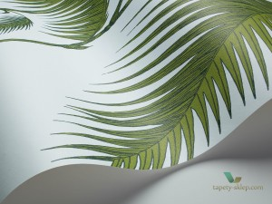 Tapeta Cole&Son Palm Leaves 66/2010 The Conptemporary Collection