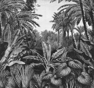 Tapeta London Art 17016-04 Tropical Mornings