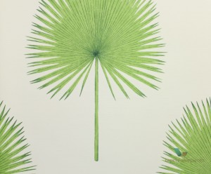 Tapeta Sanderson 216636 Fan Palm The Glasshouse