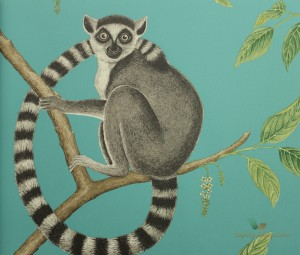 Tapeta Sanderson 216663 Ringtailed Lemur The Glasshouse