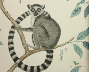 Tapeta Sanderson 216665 Ringtailed Lemur The Glasshouse