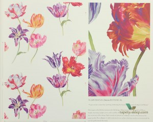 Tapeta Sanderson 216666 Tulipomania The Glasshouse
