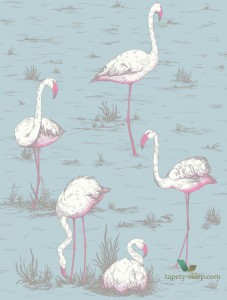 Tapeta Cole&Son Flamingos 66/6044 The Conptemporary Collection