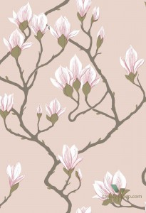 Tapeta Cole&Son Magnolia 72/3009 The Conptemporary Collection