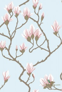Tapeta Cole&Son Magnolia 72/3011 The Conptemporary Collection