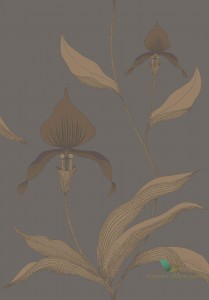 Tapeta Cole&Son Orchid 95/10056 The Conptemporary Collection