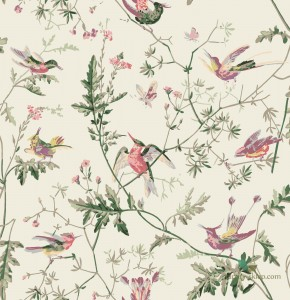 Tkanina Cole&Son Hummingbirds F62/1001 The Contemporary Collection