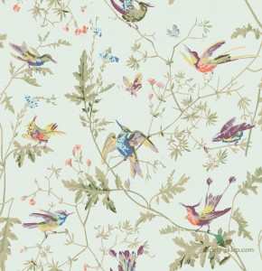 Tkanina Cole&Son Hummingbirds F62/1004 The Contemporary Collection