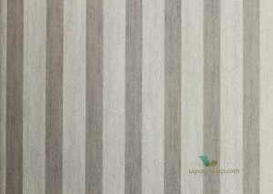 Tapeta Arte 78115 Les Rayures Stripes