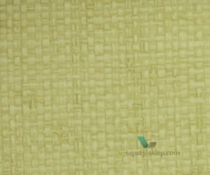 Tapeta Thibaut T14142 Bankun Raffia Texture Resource 5