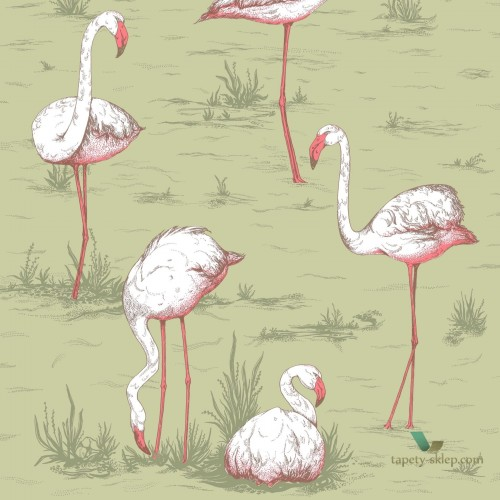 Tapeta Cole & Son Icons 112/11038 Flamingo
