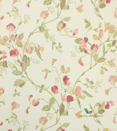 Tapeta 100/6028 Cole & Son Archive Anthology Sweet Pea