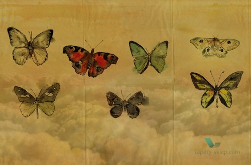 Tapeta Wall&Deco Butterflies GPW1434 Contemporary 14