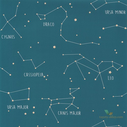 Tapeta Caselio Constellations OUP101916003 Our Planet