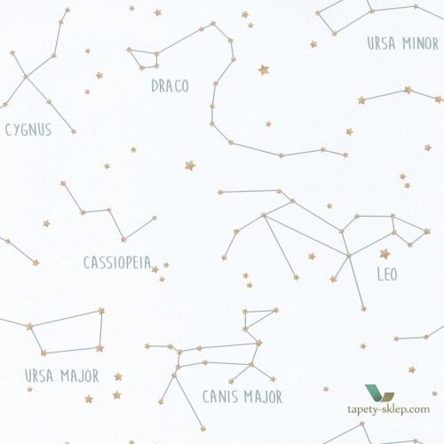 Tapeta Caselio Constellations OUP101917125 Our Planet