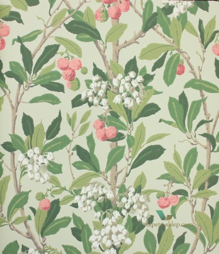 Tapeta 100/10048 Cole & Son Archive Anthology Strawberry Tree