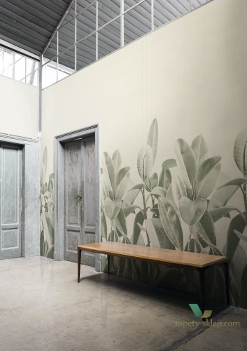 Tapeta London Art 18056 Rubber Plant