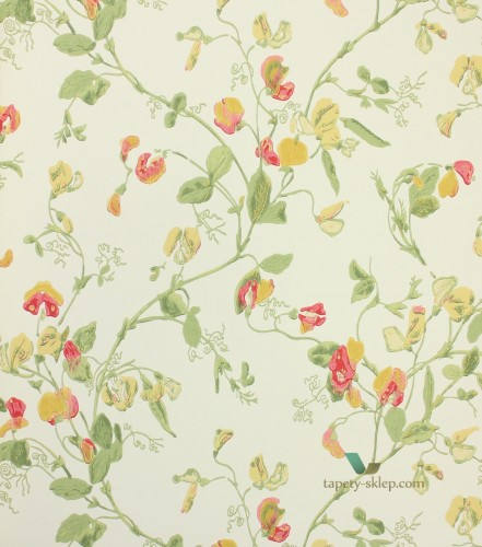 Tapeta 100/6027 Cole & Son Archive Anthology Sweet Pea