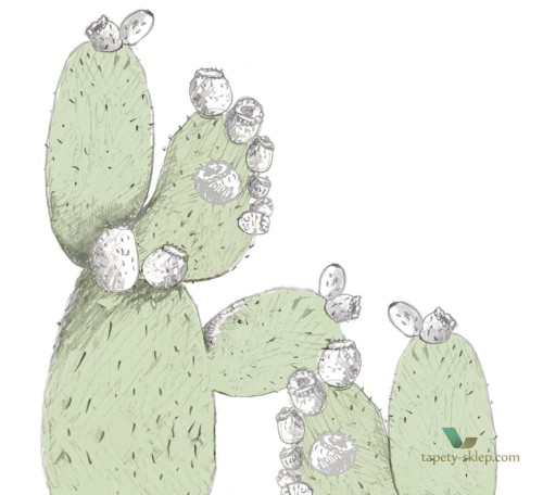 Tapeta Wall&Deco Cactus Juice WDCJ1402 Contemporary 14
