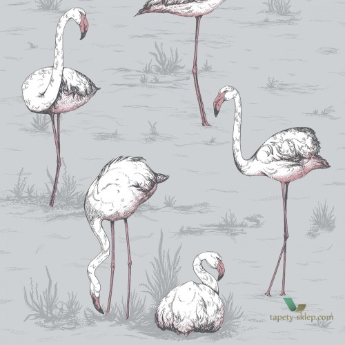 Tapeta Cole & Son Icons 112/11040 Flamingo