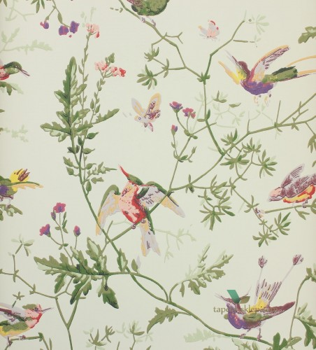 Tapeta 100/14070 Cole & Son Archive Anthology Hummingbirds