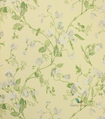 Tapeta 100/6029 Cole & Son Archive Anthology Sweet Pea