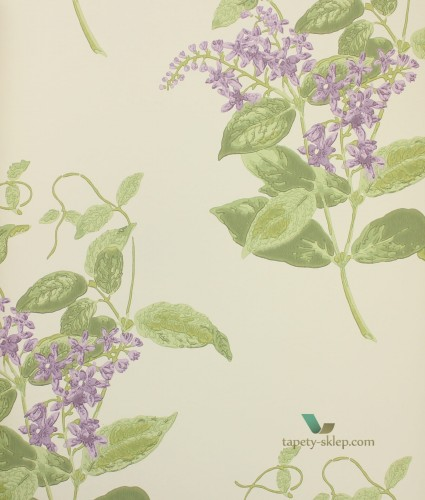 Tapeta 100/12056 Cole & Son Archive Anthology Madras Violet