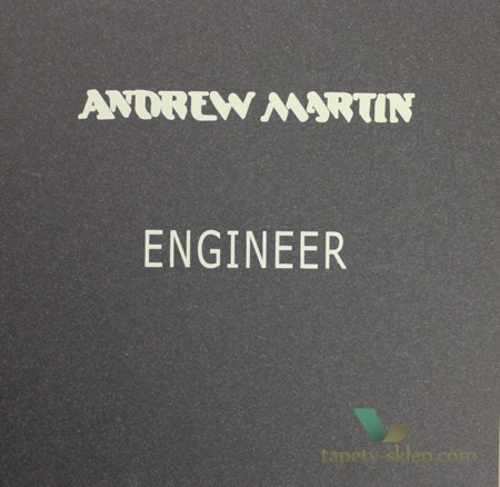 Andrew Martin Engineer