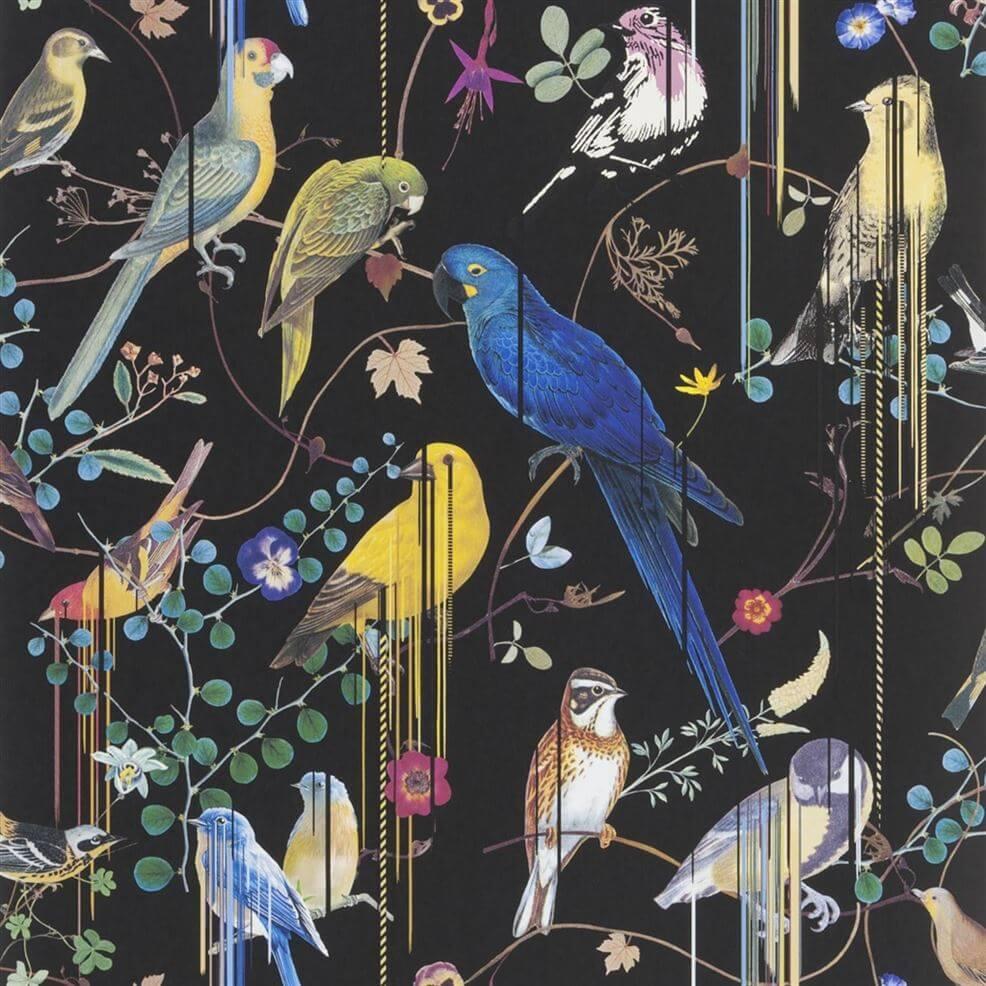 Tapeta w papugi czarne tło Christian Lacroix PCL701701 Birds Sinfonia Histoires Naturelles